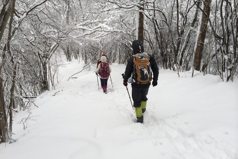 讃岐山脈で冬山トレッキングに挑戦してみませんか